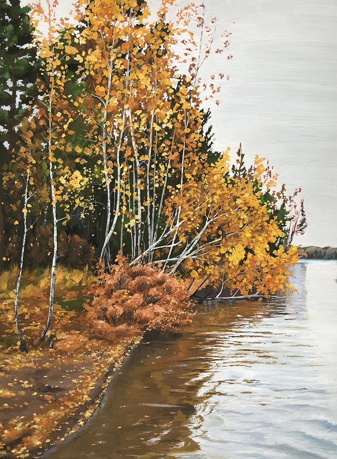 Autumn forest on Angara river